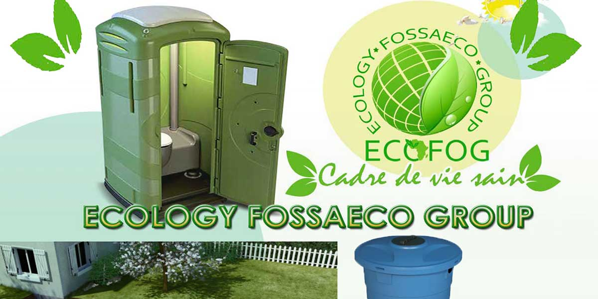 Image illustrative de la réalisation Gestion réseaux sociaux de ECOFOG